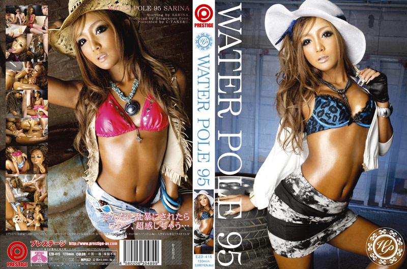 118ezd00415 WATER POLE 95